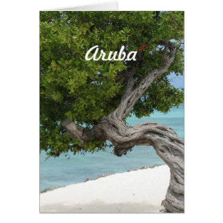 Divi Divi Baum in Aruba Grußkarte
