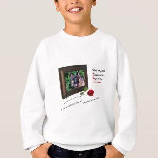 DM frame.png Sweatshirt