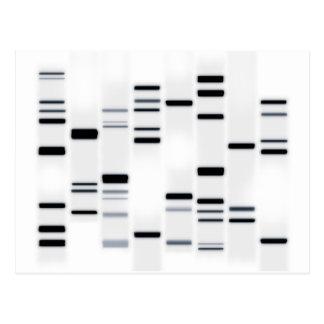 DNS kodiert Kunst-Schwarzes auf Weiß Postkarte