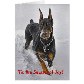 Dobermann-Feiertags-Karten-Schneeball-Fänger Karte