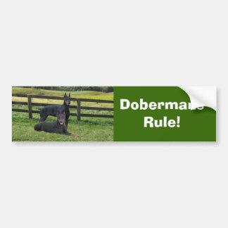 Dobermannpinscher-Freund-Autoaufkleber