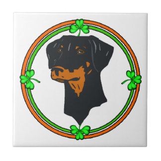 Dobermannpinscher-St. Patricks Fliese