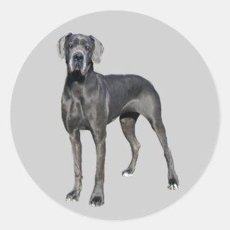 Dogge-König des Hundeaufklebers Runde Sticker