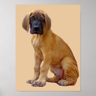 Dogge-König des Hundedruckes Poster
