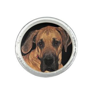 Dogge-Ring