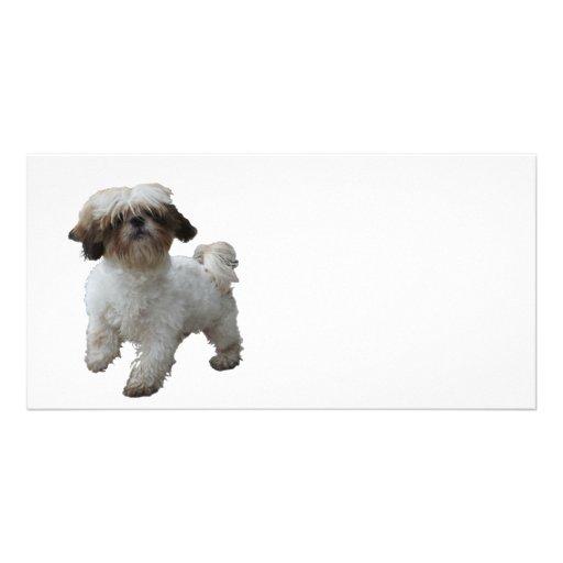 Doggy Tobby Photokartenvorlage