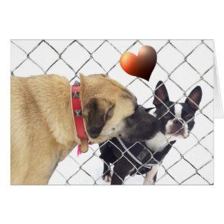 dogs in love mitteilungskarte