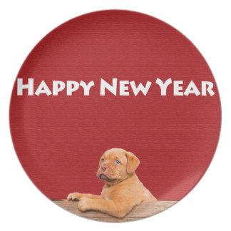 Dogue de Bordeaux, das guten Rutsch ins Neue Jahr Melaminteller