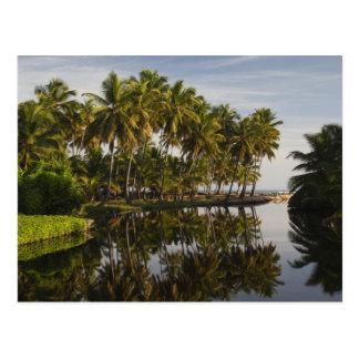 Dominikanische Republik, Nordküste, Nagua, Playa Postkarte
