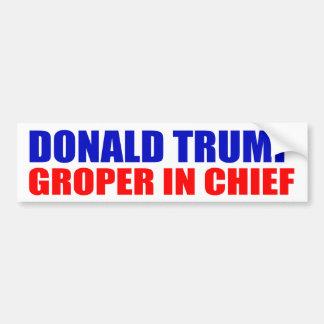 """DONALD TRUMP: GROPER IM LEITER "" AUTOAUFKLEBER"