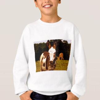 donkey-52295_1920.jpg sweatshirt