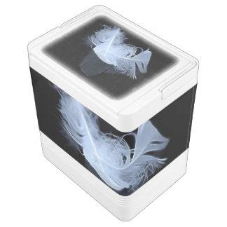 Doppelflammenfedern und -reflexion igloo kühlbox