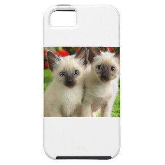 Doppelkätzchen Etui Fürs iPhone 5
