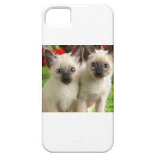 Doppelkätzchen iPhone 5 Cover