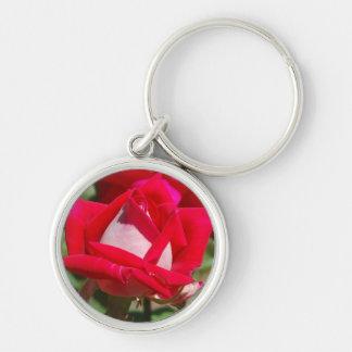 Doppelte Freuden-rote und weiße Tee-Rose Schlüsselanhänger