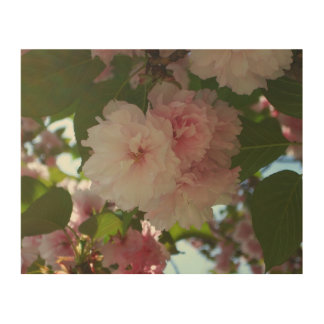 Doppelter blühender Frühling des Kirschbaum-I mit Holzwanddeko