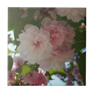 Doppelter blühender Frühling des Kirschbaum-I mit Keramikfliese