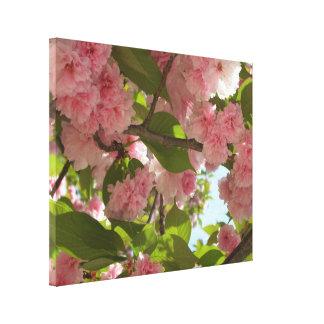 Doppelter blühender Frühling des Kirschbaum-III Leinwanddruck