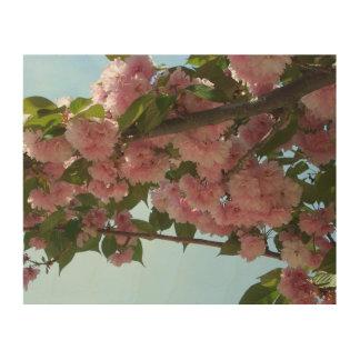 Doppelter blühender rosa Frühling der Holzdruck