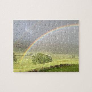 Doppelter Regenbogen in Glenshee Schottland Puzzle