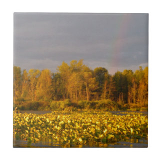 Doppelter Regenbogen-Teich Fliese