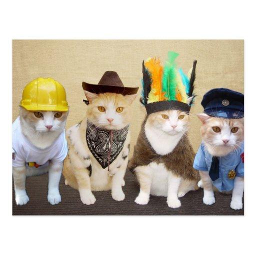 Dorf-Kätzchen Postkarten