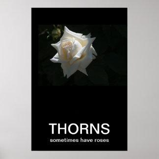 Dornen haben manchmal Rosen Demotivational Plakat