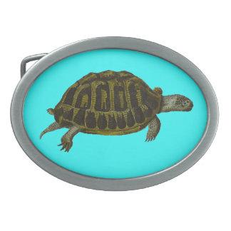 Dosenschildkröte Ovale Gürtelschnallen