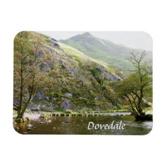 Dovedale Derbyshire, Höchstbezirksandenken-Foto Magnet