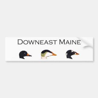 Downeast Maine Seeenten Autoaufkleber