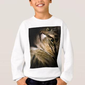 Drastische Katze 3 Sweatshirt