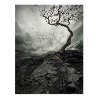 Drastischer Himmel über altem einsamem Baum Postkarte