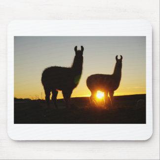 Drastischer Sonnenuntergang der Lamas Mousepad