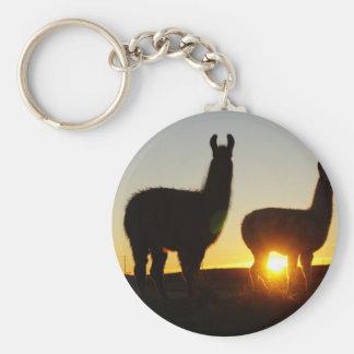 Drastischer Sonnenuntergang der Lamas Schlüsselanhänger
