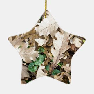 Draufsicht des gefallenen Eichen-Blätter Keramik Ornament