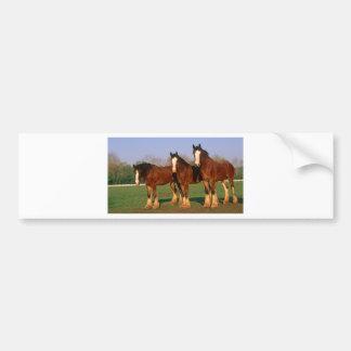 Drei Brown-Pferde Autoaufkleber