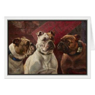 Drei Bulldoggen durch Charles Boland Karte