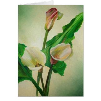 Drei Calla-Lilien Karte