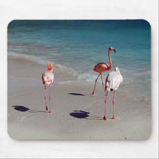 Drei Flamingos von Aruba Mousepad