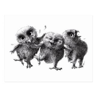 Drei glückliche Eulen Postkarte