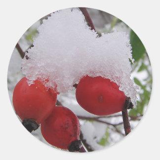 Drei Hagebutten mit Schnee Runder Aufkleber
