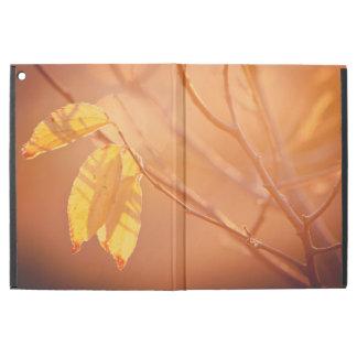 Drei Herbst-Blätter