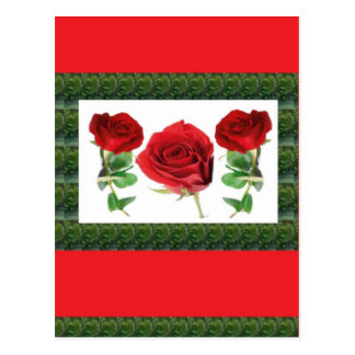 Drei HÜBSCHE Rosen Postkarte