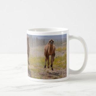 Drei junge Kamele Kaffeetasse