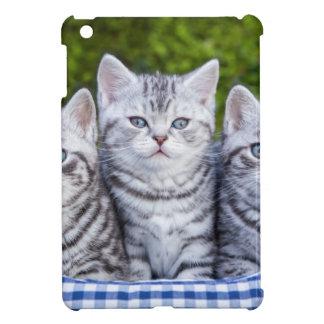 Drei junge silberne Tabbykatzen im karierten Korb Hüllen Für iPad Mini