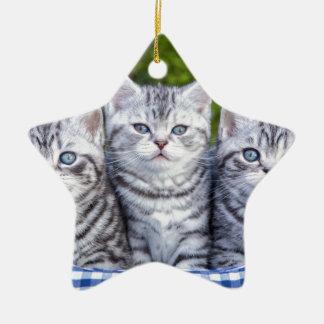 Drei junge silberne Tabbykatzen im karierten Korb Keramik Stern-Ornament