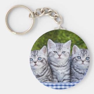 Drei junge silberne Tabbykatzen im karierten Korb Schlüsselanhänger