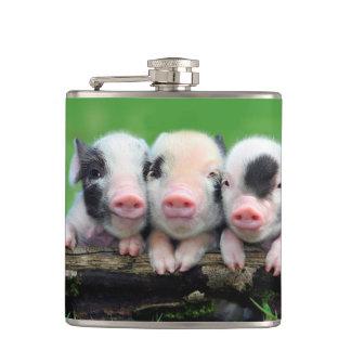 Drei kleine Schweine - niedliches Schwein - drei Flachmann