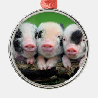 Drei kleine Schweine - niedliches Schwein - drei Rundes Silberfarbenes Ornament