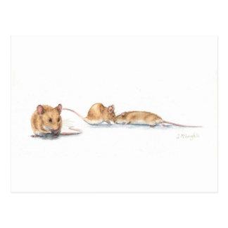 Drei Mäuse Postkarte